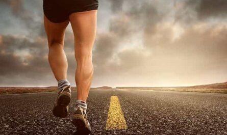 Testosteron und Fitness